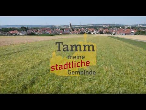 Gemeinde Tamm Jahresrückblick 2019